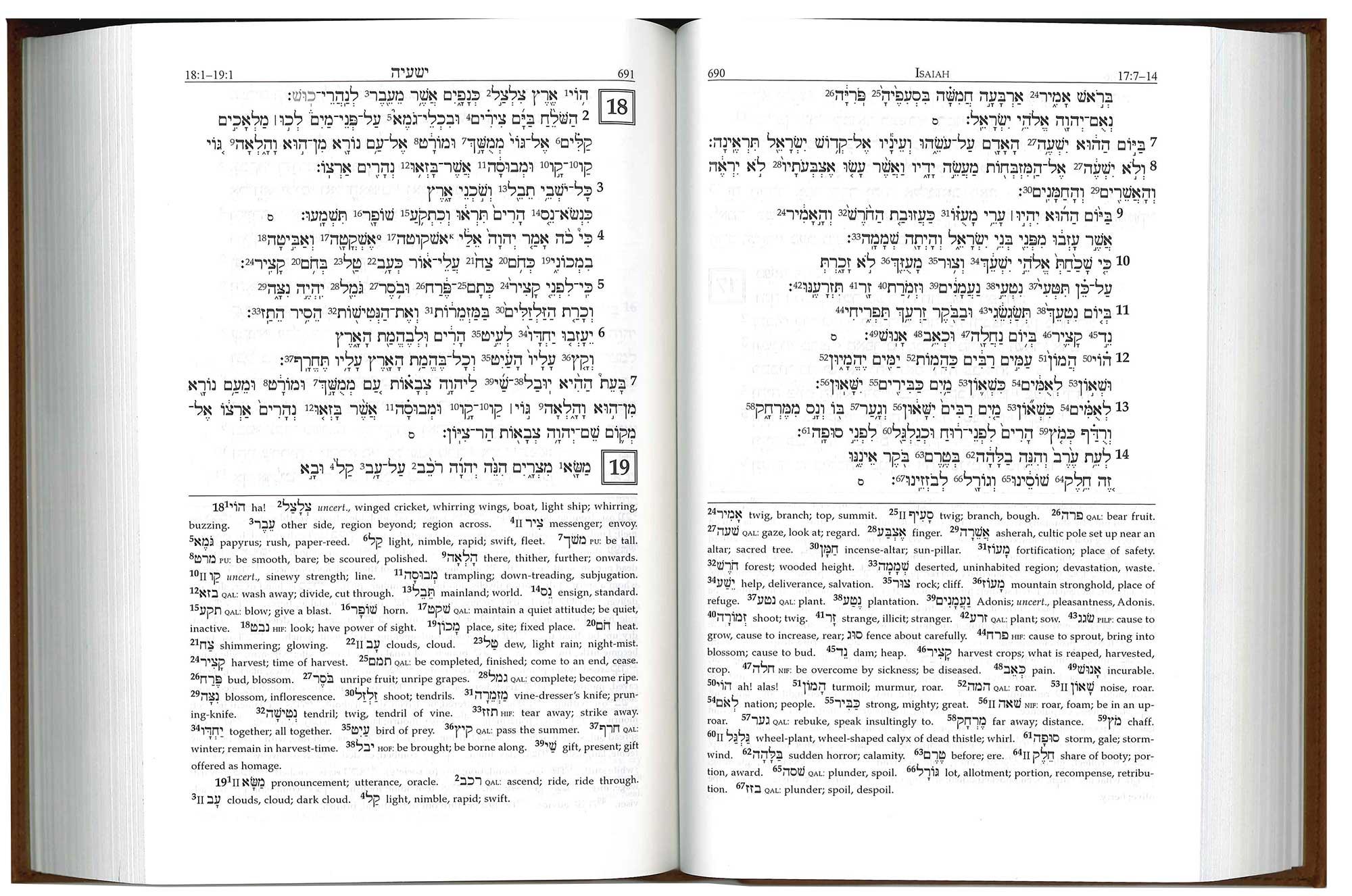 A Reader's Hebrew Bible, Italian Duo-Tone Cover